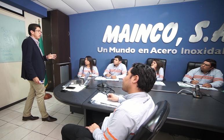 visón_mainco